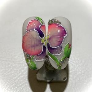 Orchidea con Semipermanenti